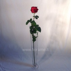 VASE CONICAL H060 D11 WITH FOOT-glass