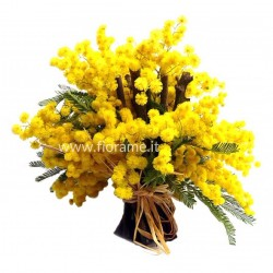MIMOSA WITH STICKS-deck- € from 15 to 39