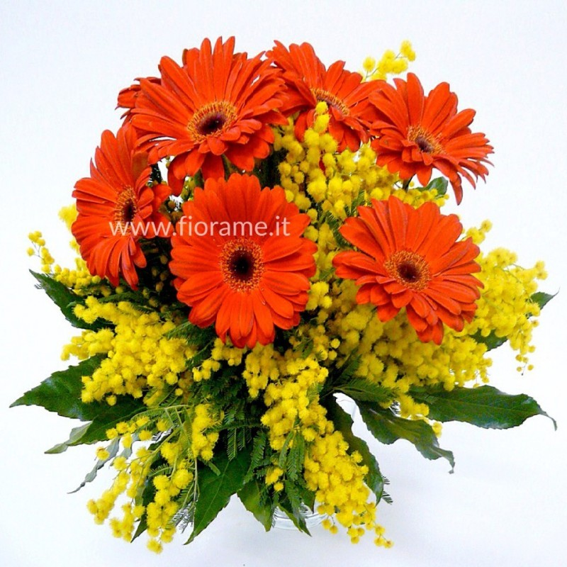 MIMOSA YELLOW AND GERBERA-bouquet-from € 26 to 50