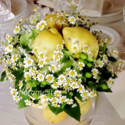 LEMONS CAMILLA-centerpieces-from € 23,50 to 45