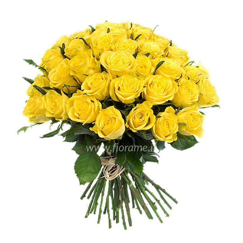 YELLOW ROSES L60 - choose the nr.