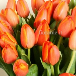 TULIP - meaning
