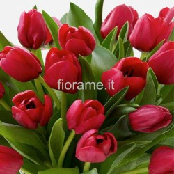 TULIPS RED IN NUMBER
