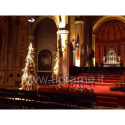 CHRISTMAS TREE WITH BIRCH TREE GOLDEN