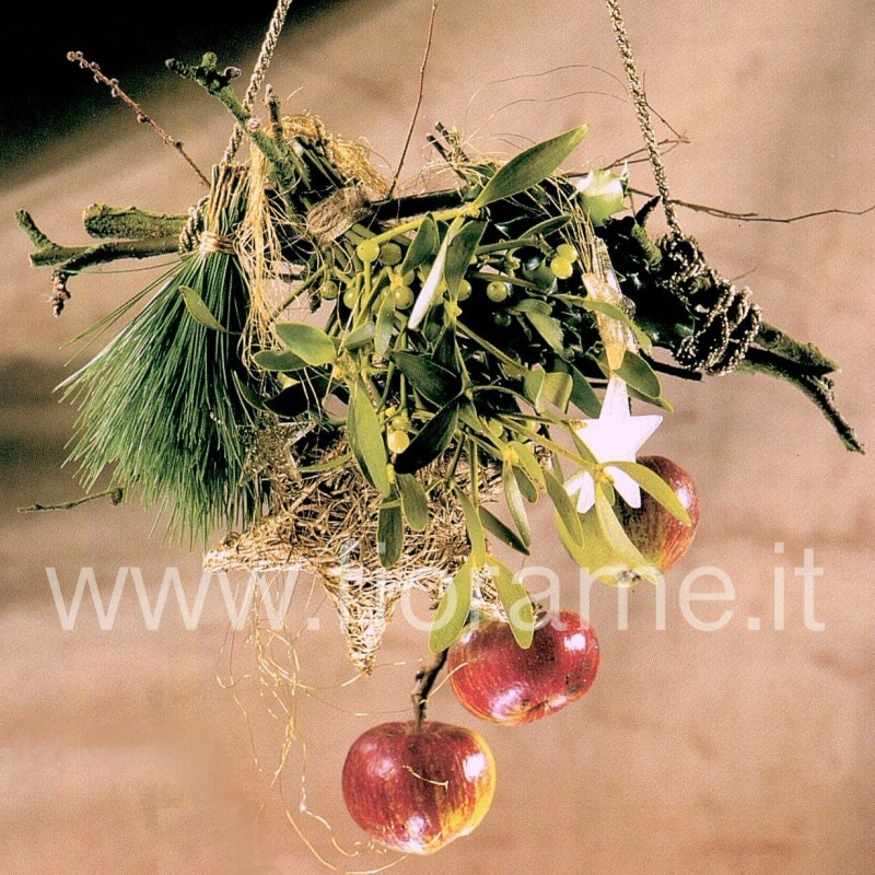 MISTLETOE HUNG WITH APPLES